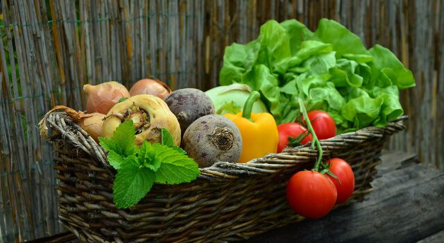 La vitamine B2 (riboflavine)